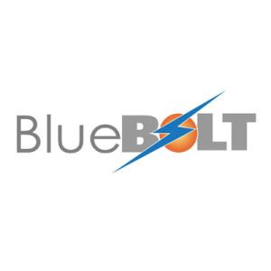 The Little Guys Bluebolt Logo